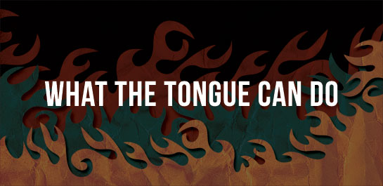 http://biblehub.com/esv/proverbs/18.htm